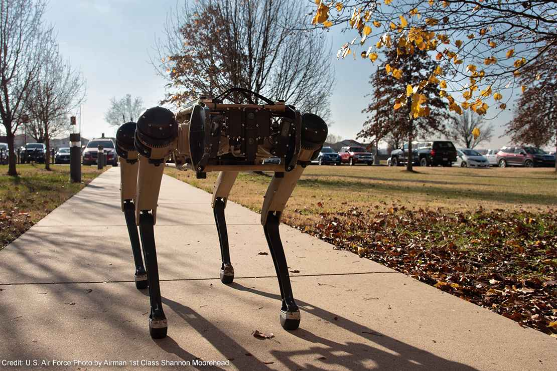 A semi-autonomous robot dog walking on a sidewalk.
