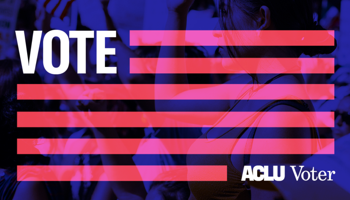 aclu voter flag